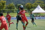 2019년도 영덕군 유치 5개 전국 규모 축구 대회 !!